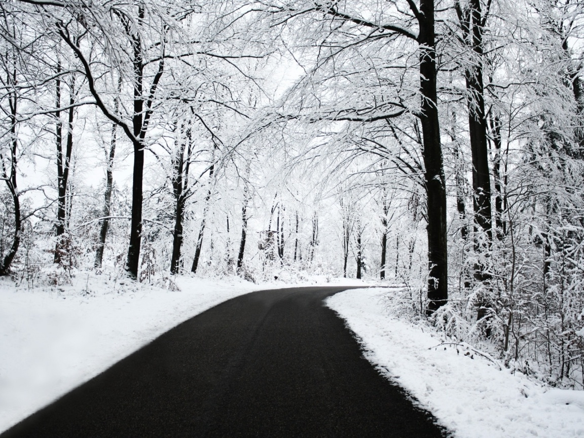 1152x864 Winter Forest & Road