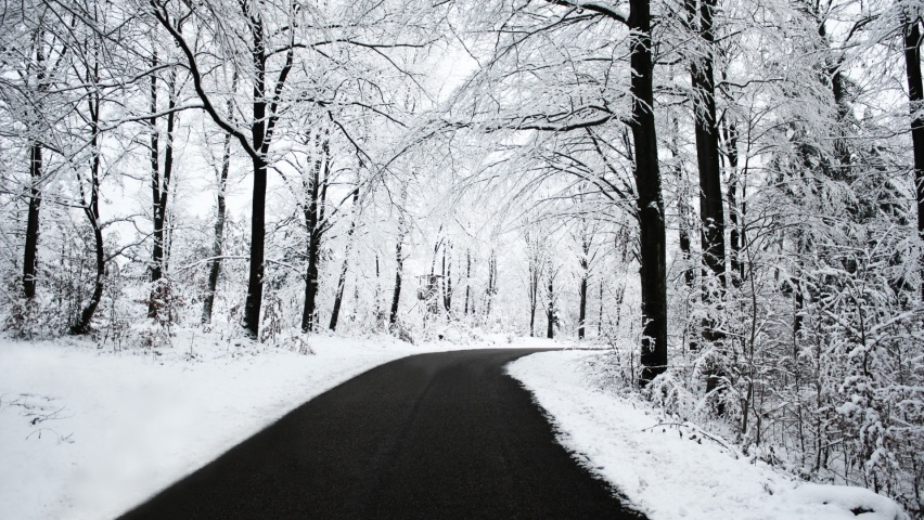 852x480 Winter Forest & Road