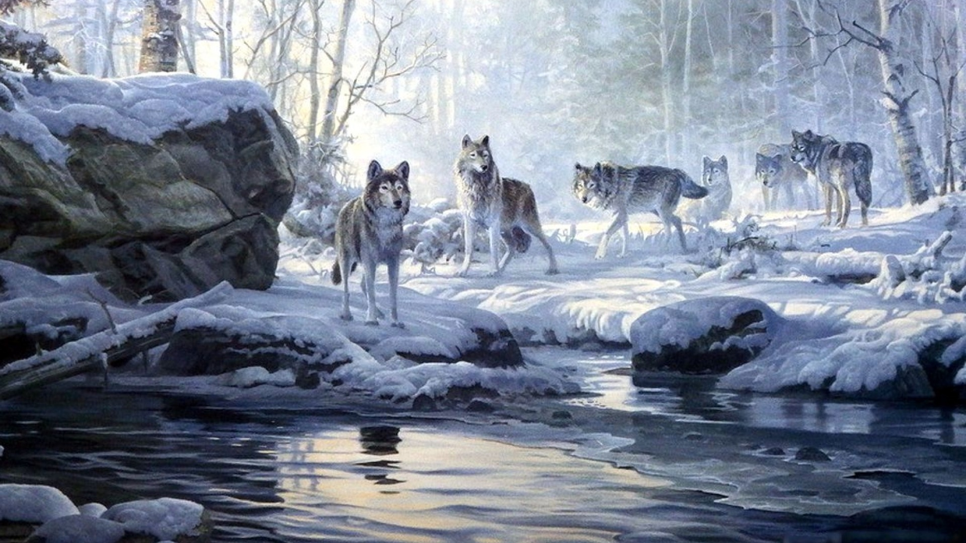 Good Wallpaper Mac Wolf - winter-forest-wolves-creek_wallpapers_50362_1920x1080  Snapshot_857926.jpg