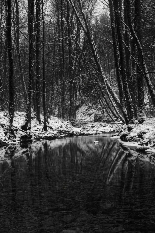 640x960 Winter In Black And White Iphone 4 Wallpaper