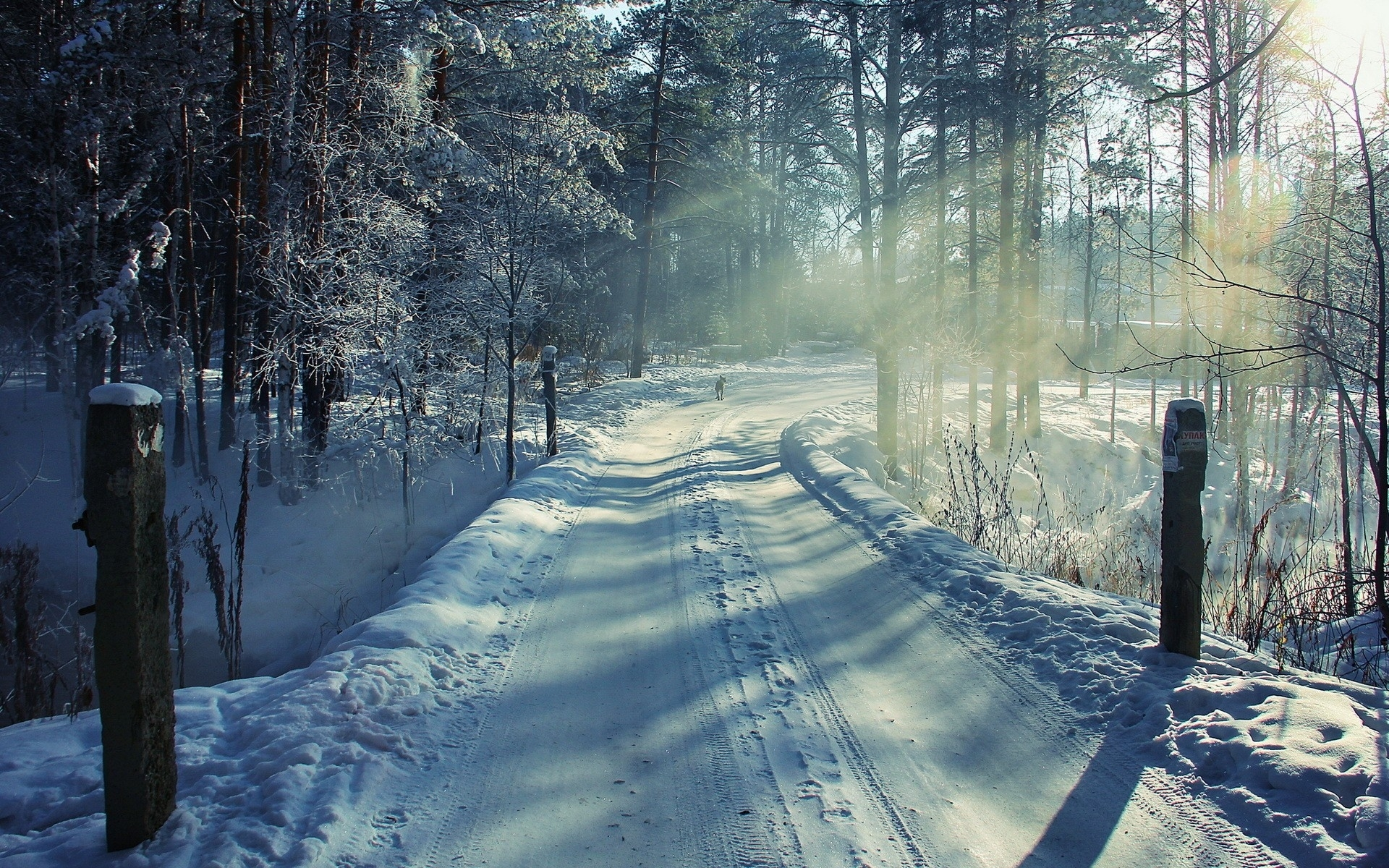 Winter Road & Forest wallpapers | Winter Road & Forest ...