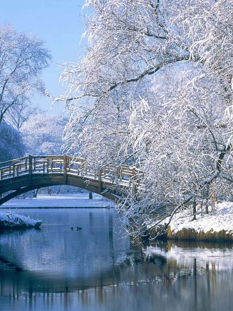 768x1024 winter scenery ipad mini wallpaper
