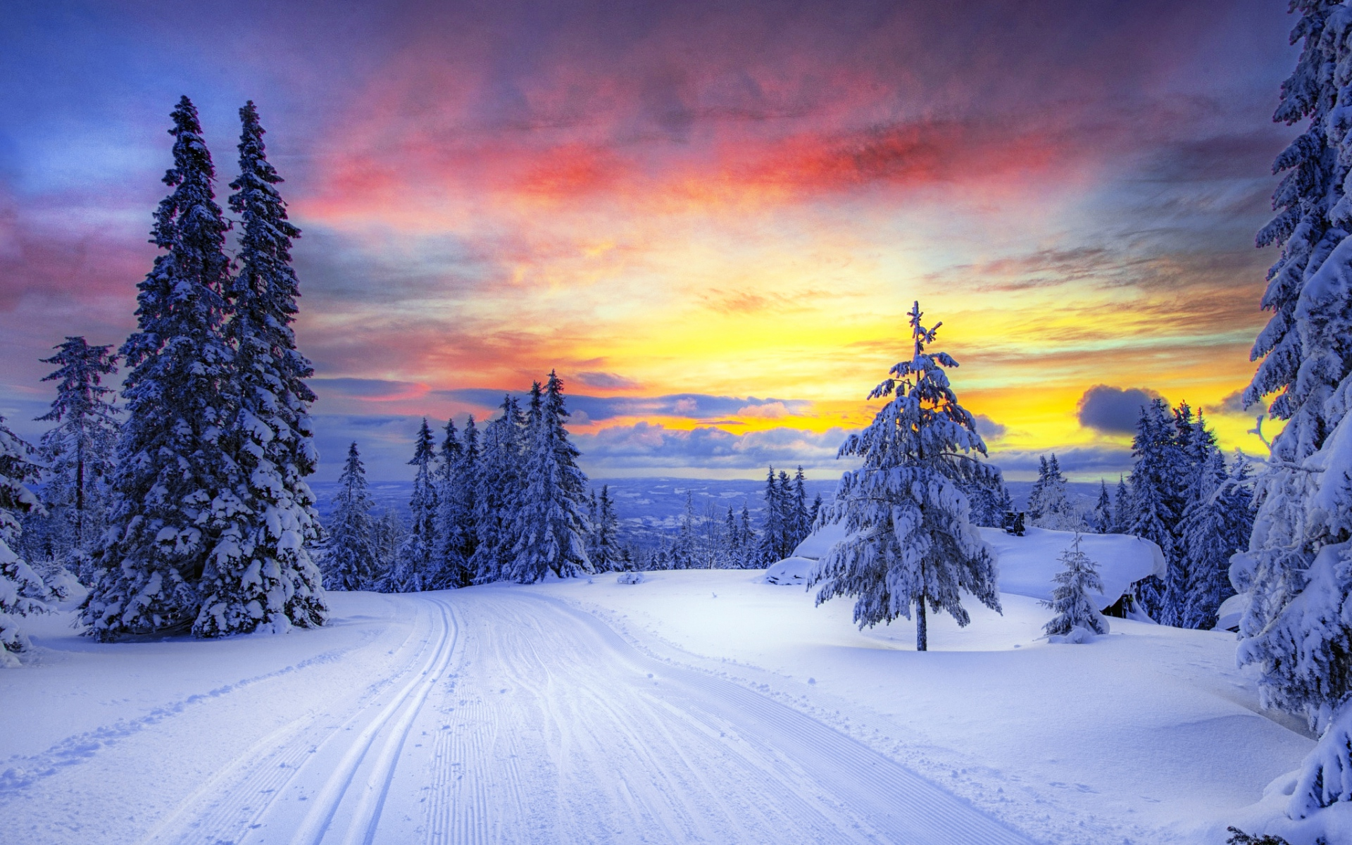 Winter Trees Snowy Road Sunset wallpapers   Winter Trees ...