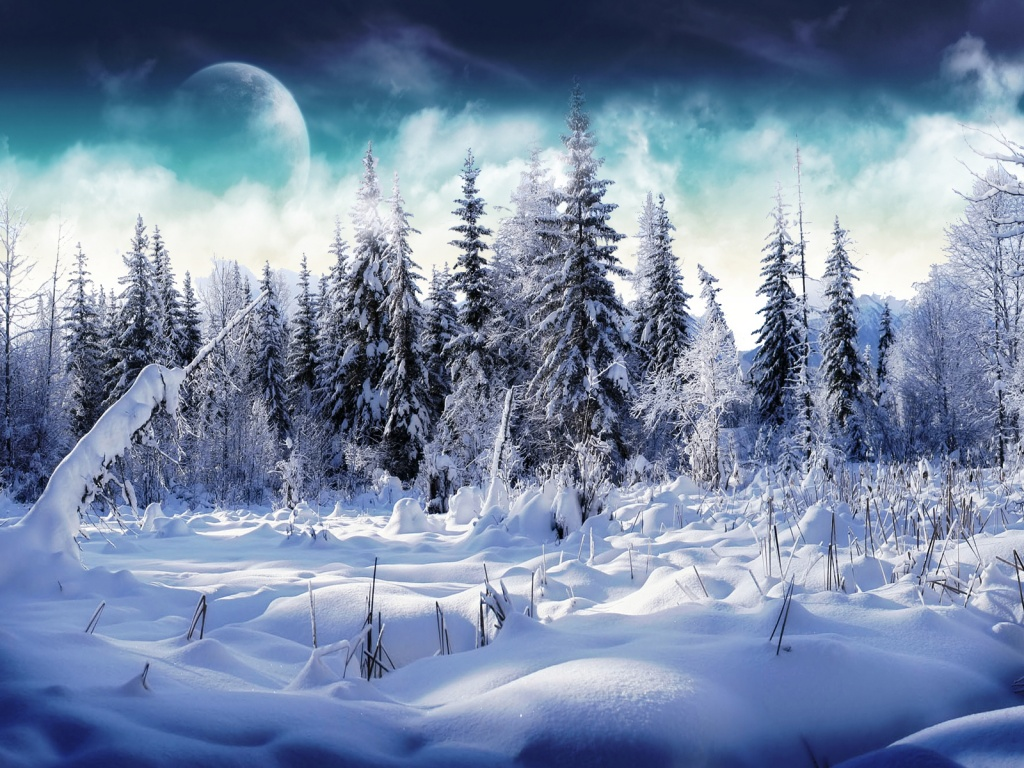 Winter Wallpaper 1024x768