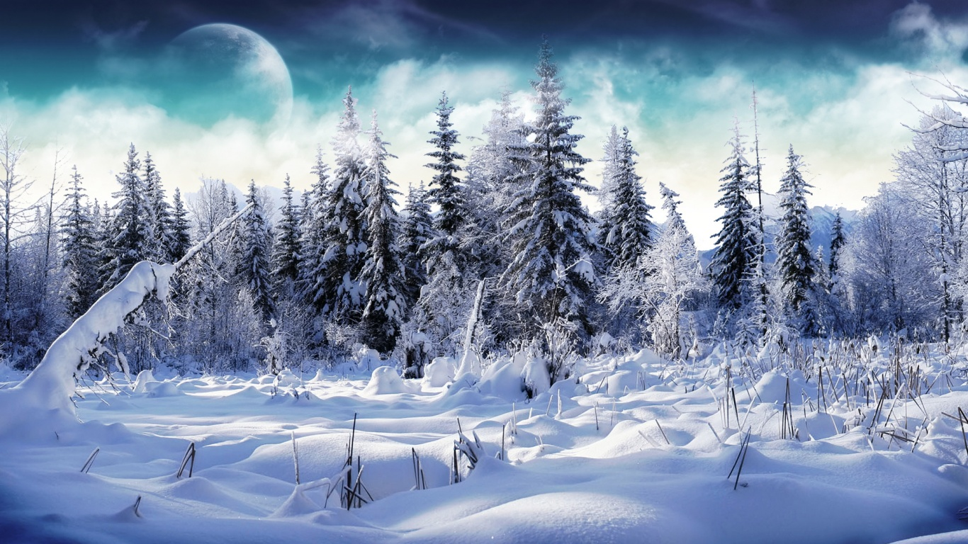 Winter Wallpaper 1366x768