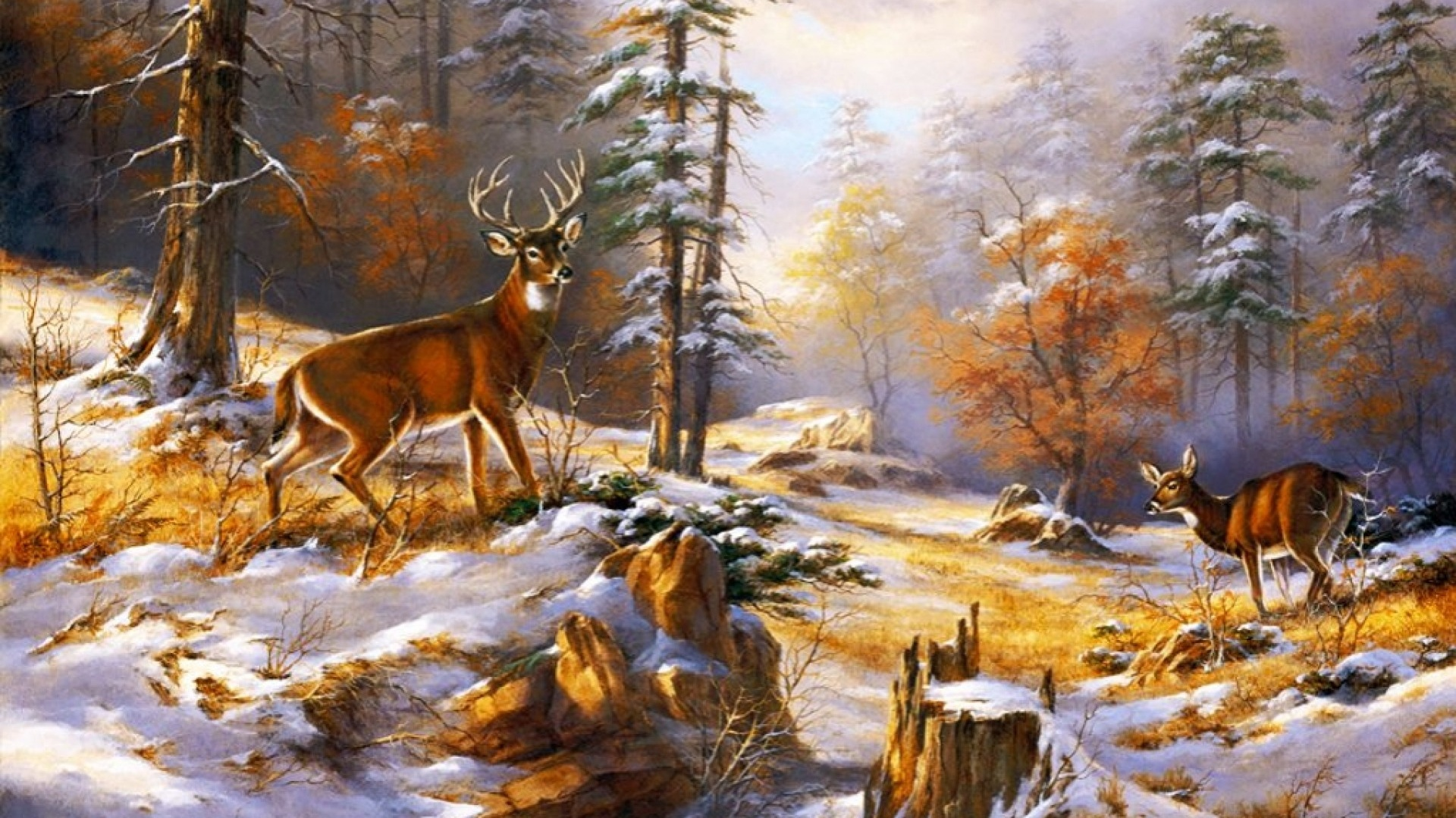 1920x1080 Wood Pretty Deer Early Winter desktop PC and Mac