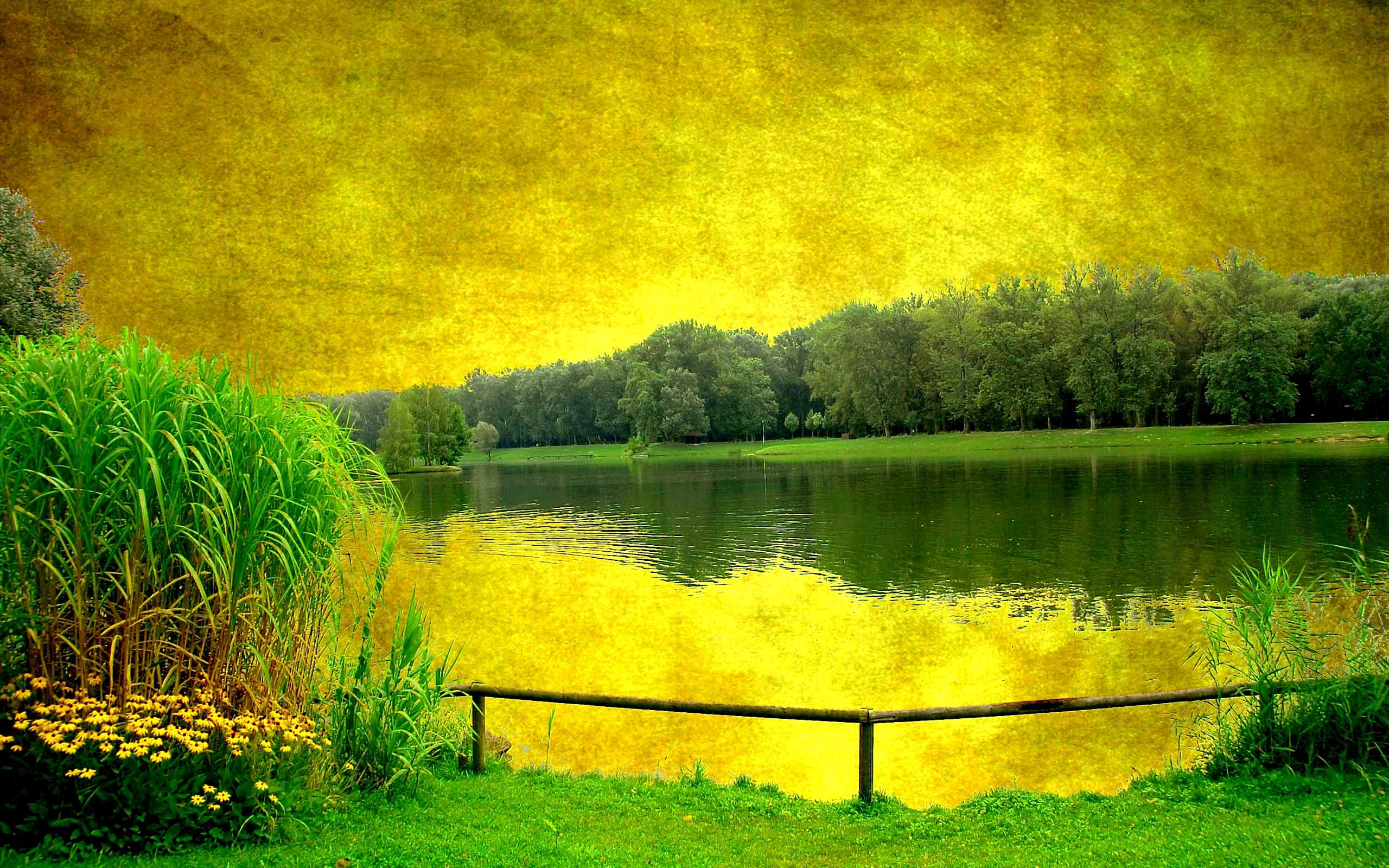 Image Yellow Sky Green Scenery Lake Wallpapers And Stock Photos