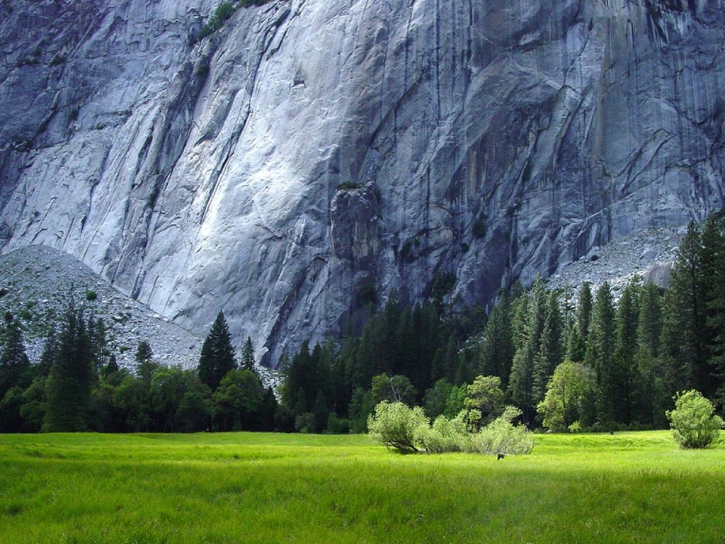 1024x768 Yosemite National Park Scenery