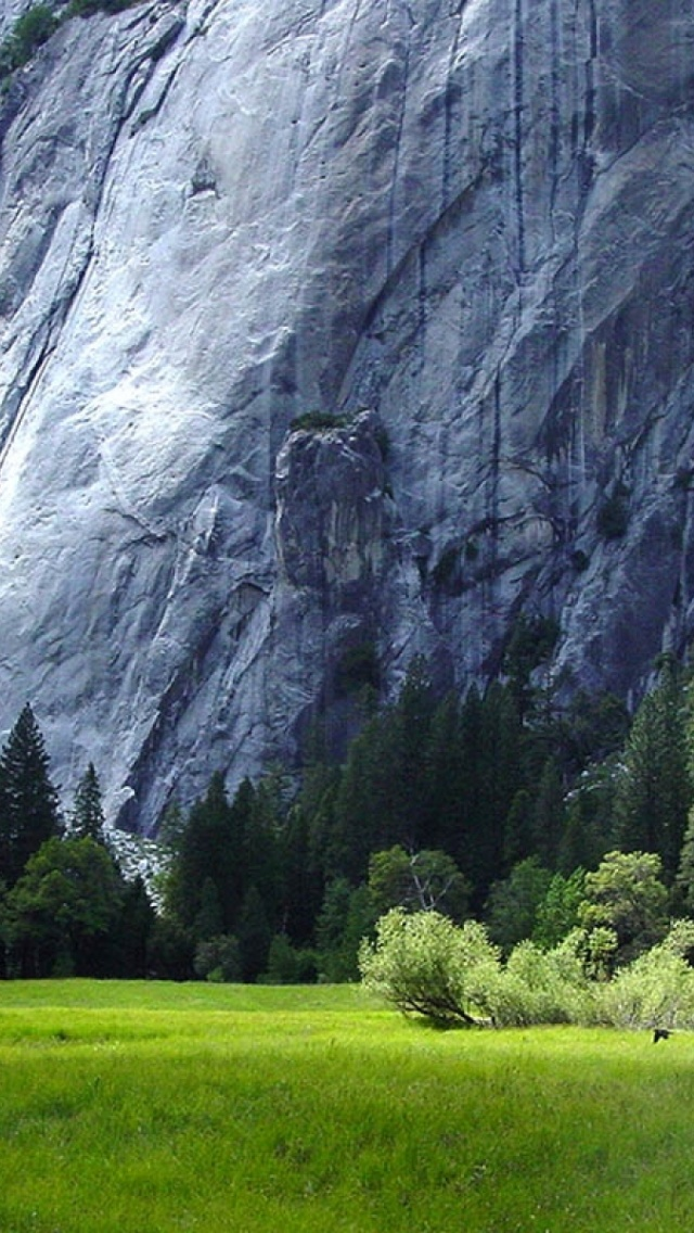 640x1136 Yosemite National Park Scenery
